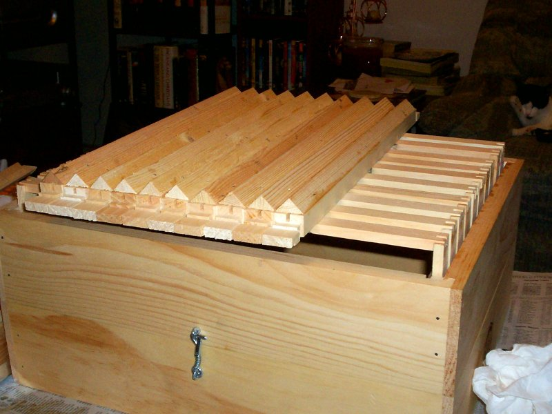Here's chamfer trim comb guides glued and nailed to Langstroth top-bars, ready to go in the frame-jig.