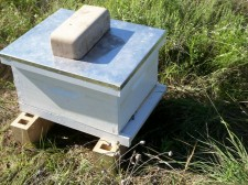 Hive back home in apiary.